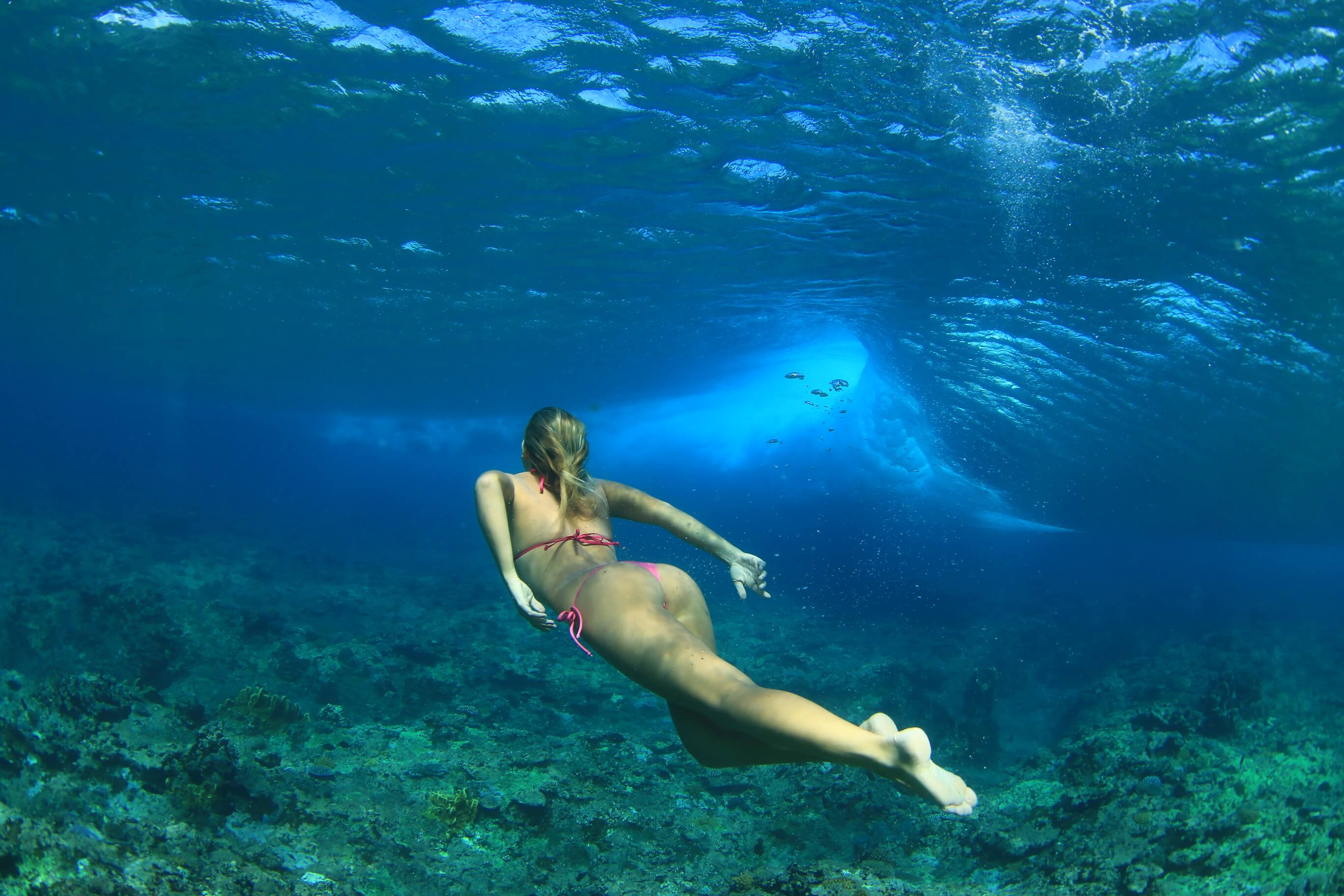 Diving and snorkeling at Pohnpei Surf Club, in Micronesia